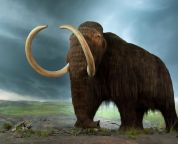 these are the extinct animals that we can and should be resurrected