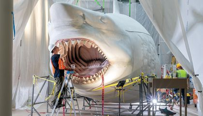 Reimagining the Megalodon, the World's Most Terrifying Sea Creature