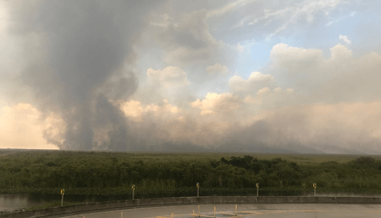 A Large Fire Is Raging Through the Everglades