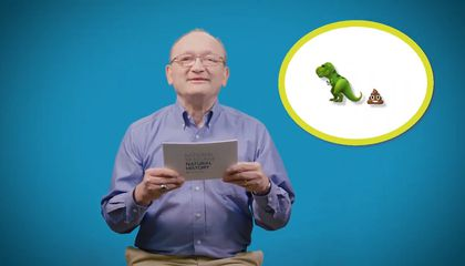 What Is the Smallest Known Dinosaur and Other Questions Answered by Dr. Hans Sues
