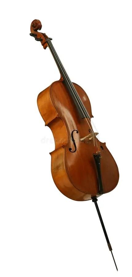 低音大提琴viol大提琴 庫存圖片. 圖片 包括有 普遍, 沒人, 雕刻, 奏鳴曲, 槭樹, 大提琴, 曲調 - 14227813