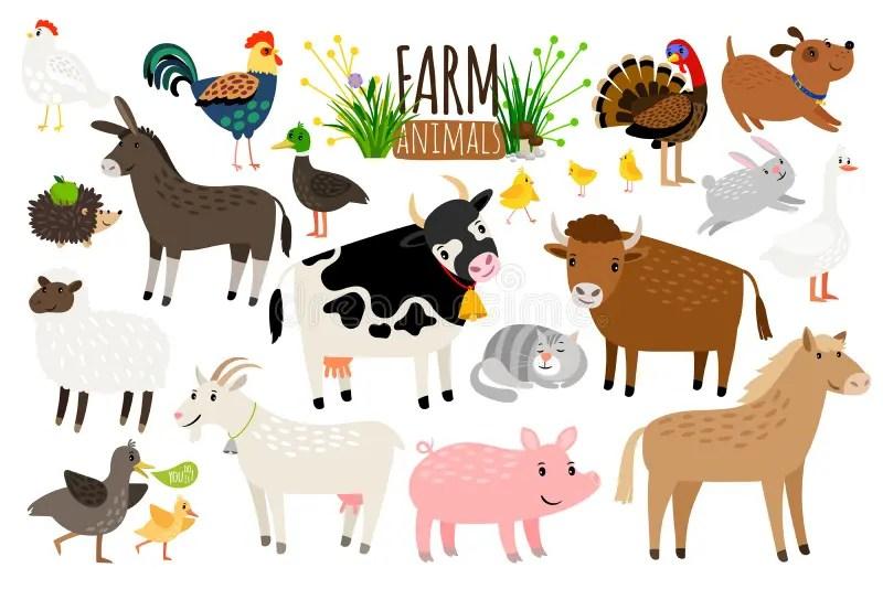 牲口和寵物具體化 向量例證. 插畫 包括有 牲口和寵物具體化 - 57486146