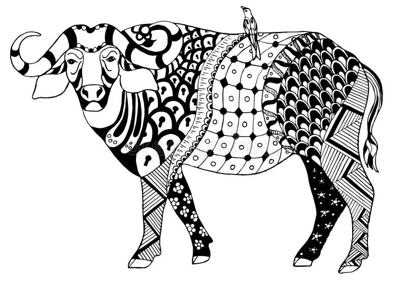 African Buffalo Stock Illustrations