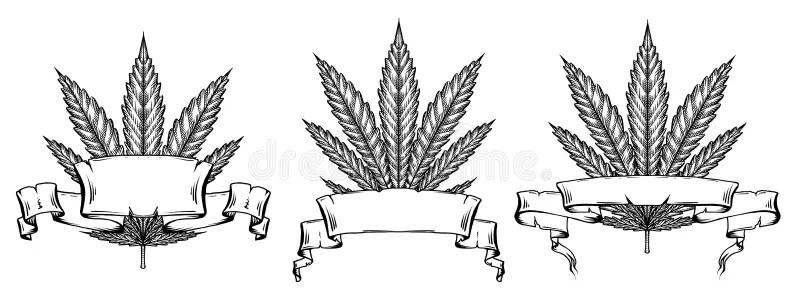 Pergaminho ilustração stock. Ilustração de marrom