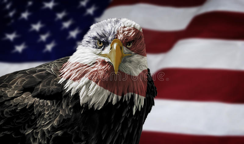 American Bald Eagle On Flag Stock Photo Image 48527559