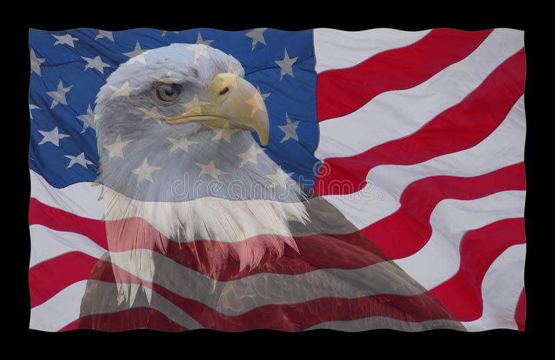 Flag American Bald Pictures Eagle