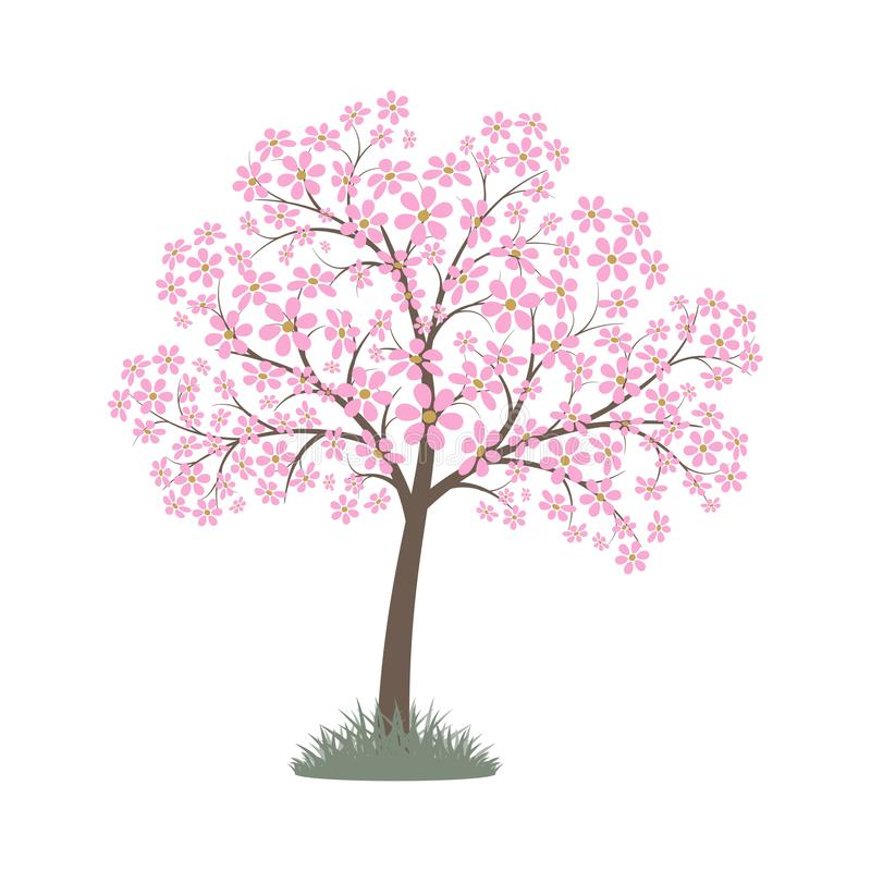 arbre fleuri stock illustrations