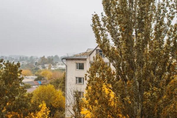 autumn landscape and fog
