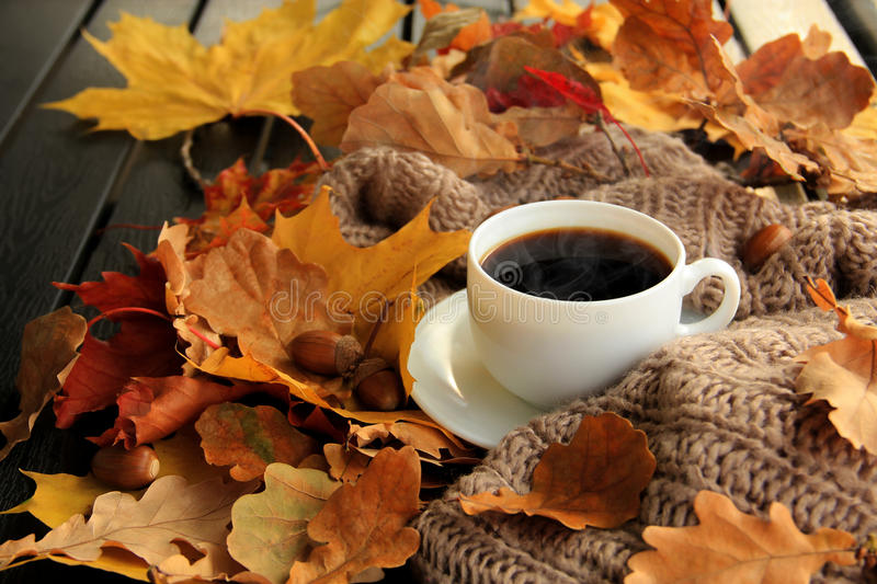 Rustic Fall Desktop Wallpaper Autumn Leaves And Coffee Cup Stock Photo Image 61159218