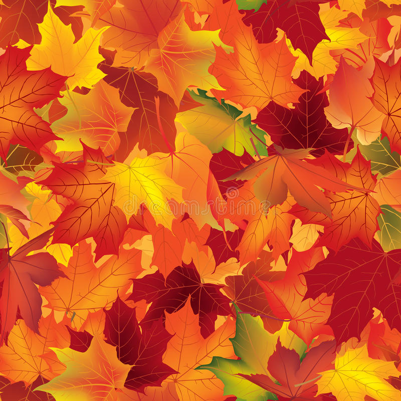 Falling Leaves Wallpaper Live Autumn Texture Fall Pattern Wallpaper With Maple Leaves