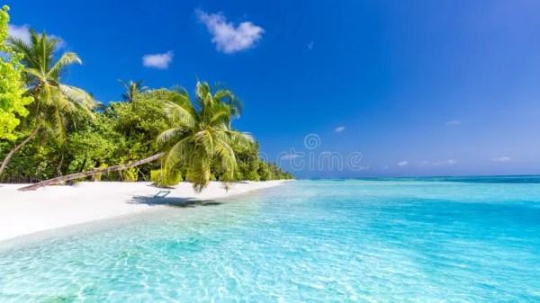 beach background. beautiful