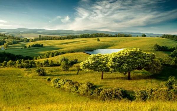 beautiful hilly landscape