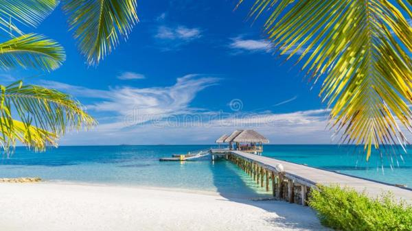 beautiful tropical landscape. maldives