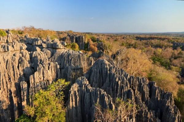 beautiful tsingy landscape stock