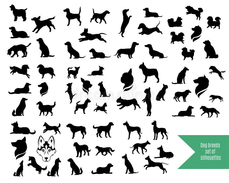 Chihuahua Dog Vector Silhouettes Stock Vector