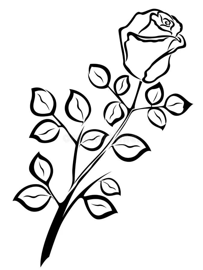 Black Outline Of Single Rose Flower Stock Vector