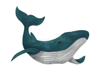 172 Cartoon Blue Whale Photos Free & Royalty Free Stock Photos from Dreamstime