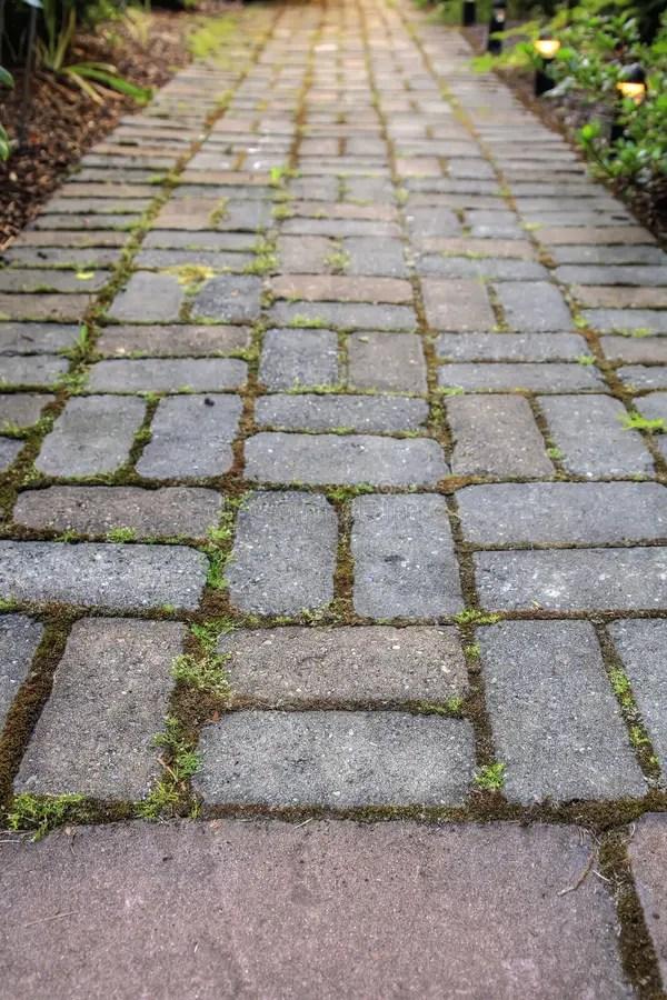 brick pavers garden path stock