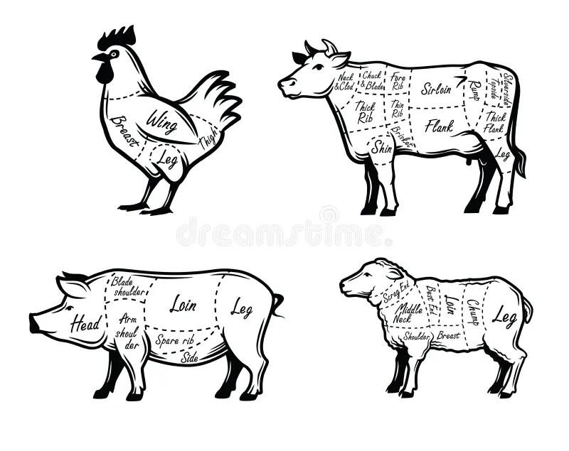Car symbols set stock vector. Illustration of transport