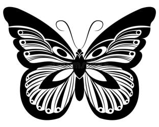 Butterfly Black & White Silhouette Design Stock Illustration Illustration of decorative isolated: 133951043