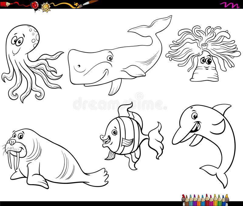 Dolphin Animal Cartoon Illustration Stock Vector