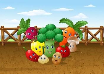 vegetable garden cartoon farm background vector illustration soil illustrations clip growing character fungus vectors similar
