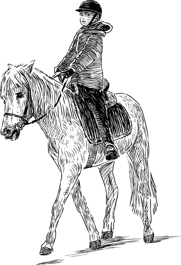 A kid riding a horse stock vector. Illustration of farm