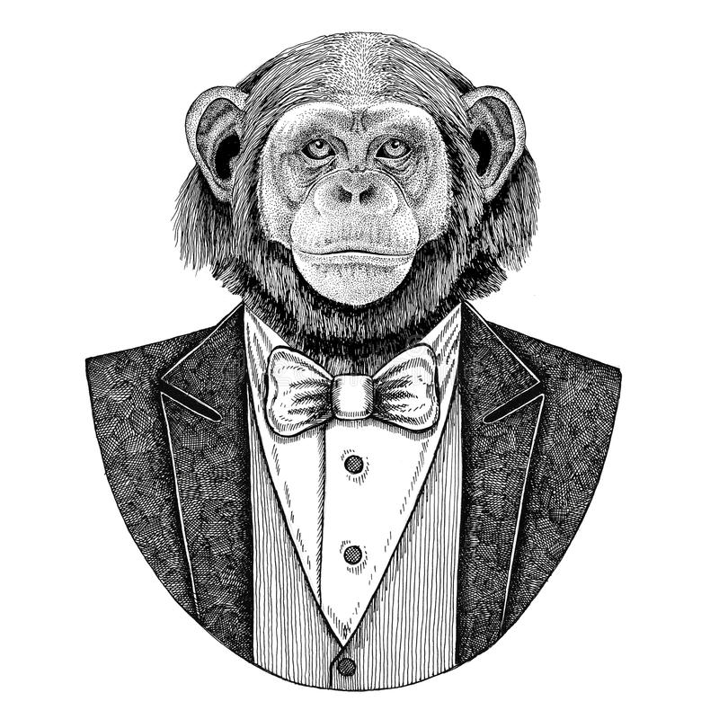 chimpanzee monkey hipster animal