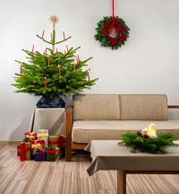 Christmas Tree In Living Room Stock Photo - Image: 39475704