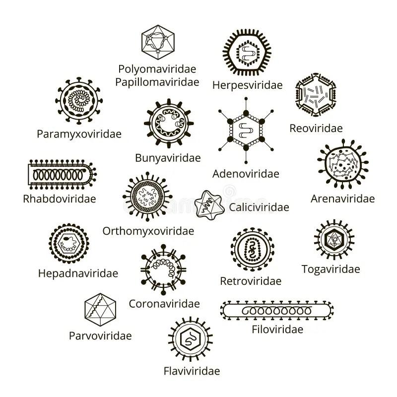 Ebola viruse stock illustration. Illustration of design