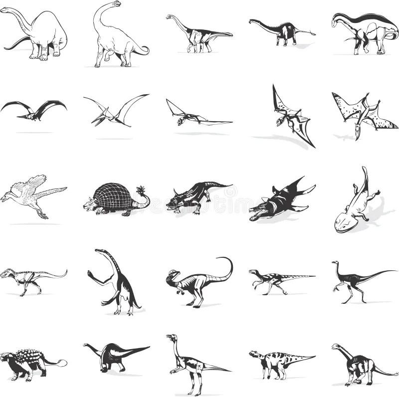 Esqueleto del dinosaurio ilustración del vector