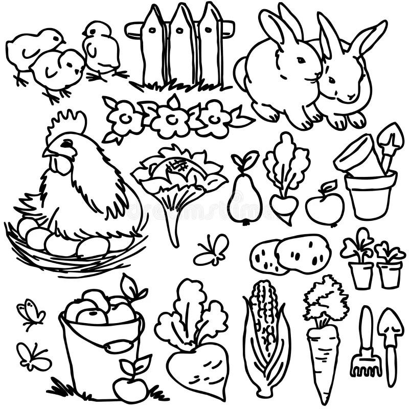 Coloring Book, Cartoon Farm Animals Stock Illustration