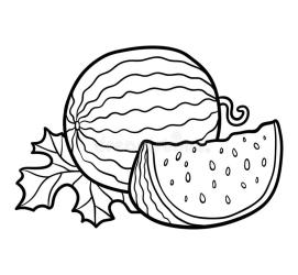 Outline Watermelon Clipart Black And White