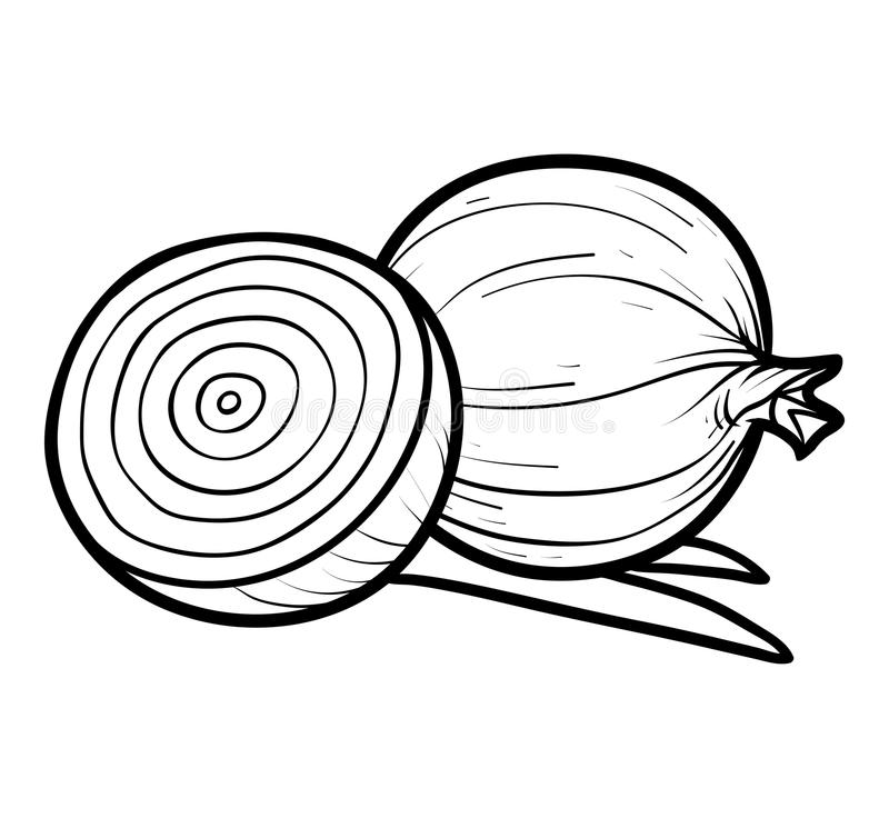 Coloring book, Red onion stock vector. Illustration of