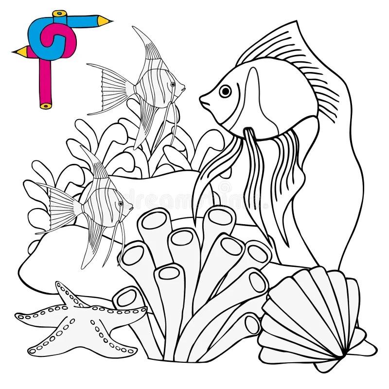 Coral Reef Design Cartoon Vector