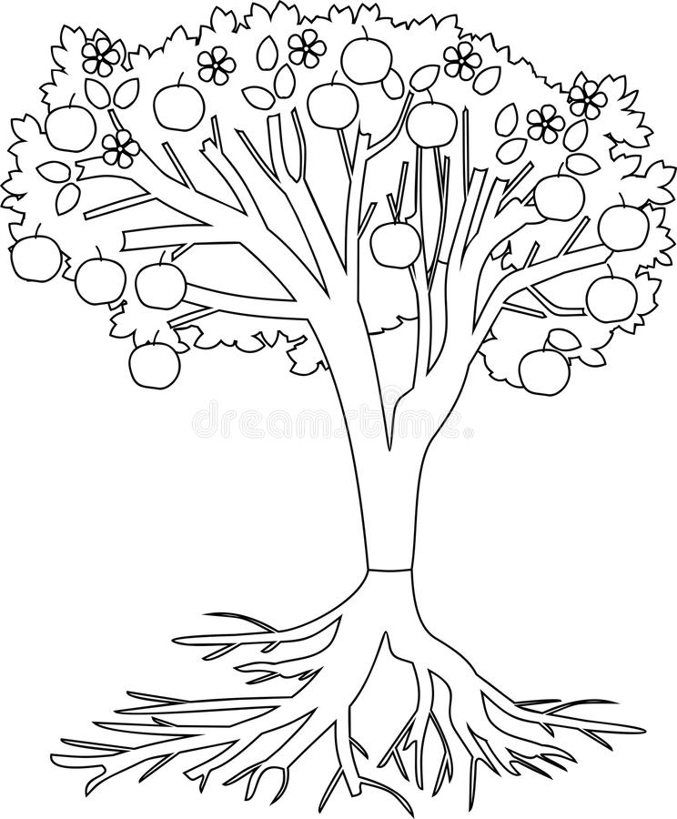 Apple tree coloring page stock illustration. Illustration
