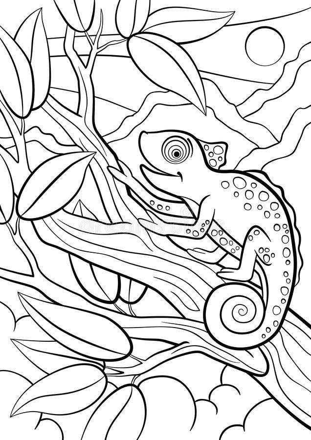 Coloring Pages. Wild Animals. Little Cute Chameleon Stock