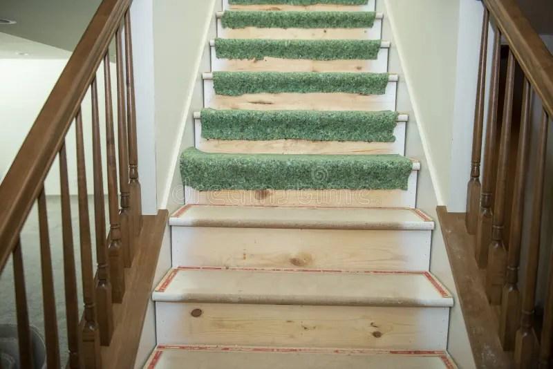 430 Basement Stairs House Photos Free Royalty Free Stock   Carpet For Basement Stairs   Exterior   Finishing   Navy Blue   Herringbone   Berber