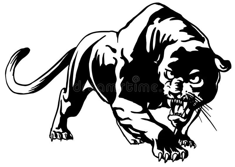 Cougar stock vector. Illustration of symbol, mammal