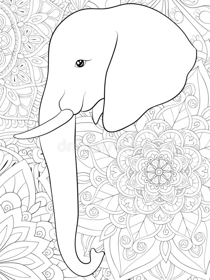 Adult Coloring Elephant Stock Illustrations