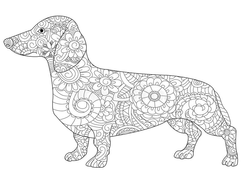 Dachshund Coloring Book For Adults Vector Stock Vector
