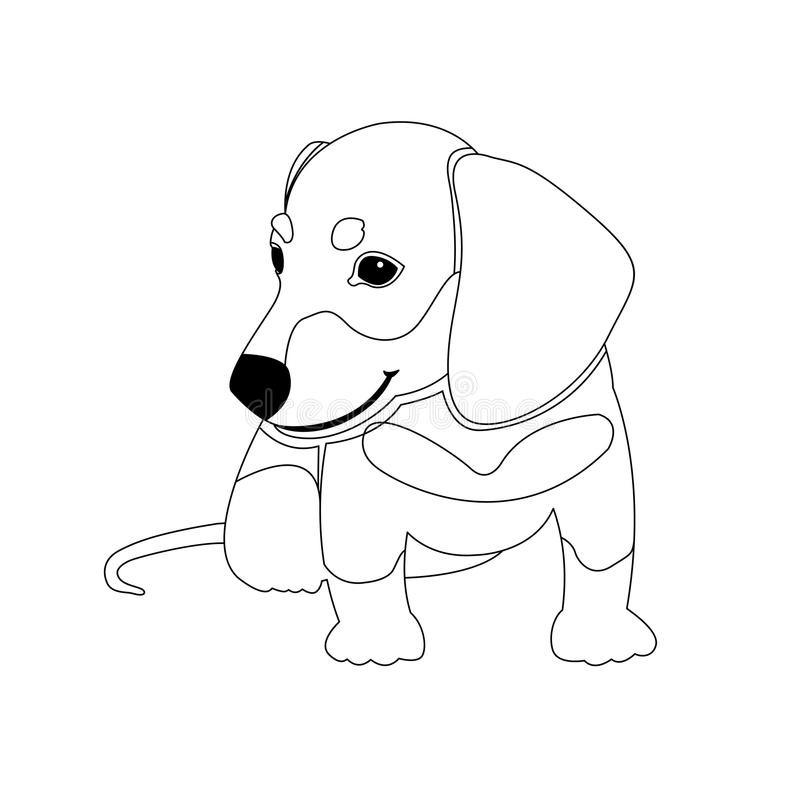 Dachshund Coloring Book For Stock Vector
