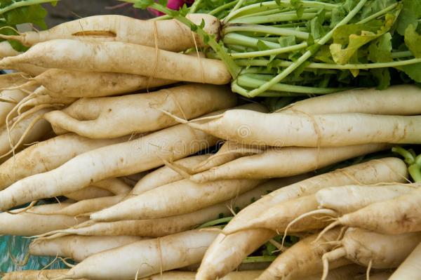 Daikon Radishes Stock Photos Image 16651433