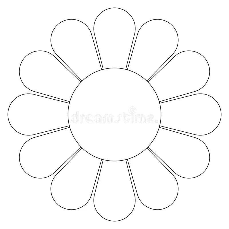 Daisy flower (vector) stock vector. Illustration of petal