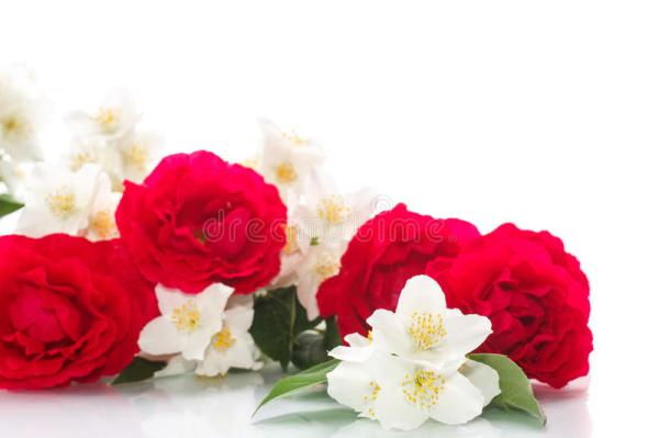 Delicate Bouquet Of Roses And Jasmine Stock Image Image
