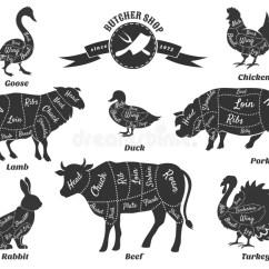 Vintage Lamb Butcher Diagram 2001 Suzuki Gsxr 750 Wiring Diagrams For Shop Stock Vector. Image Of Icon - 56926714