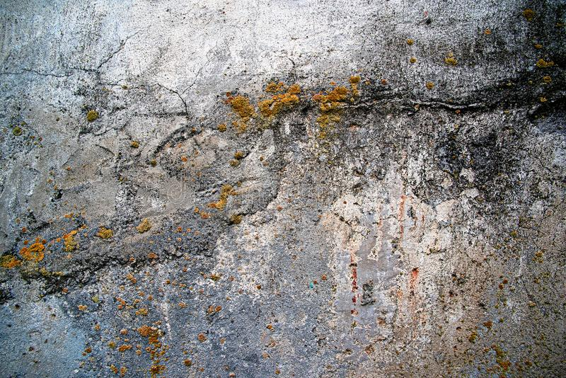 Dirty Concrete Wall With Yellow Mold Stock Photo - Image ...