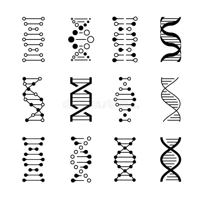Human Evolution Pictogram stock vector. Illustration of