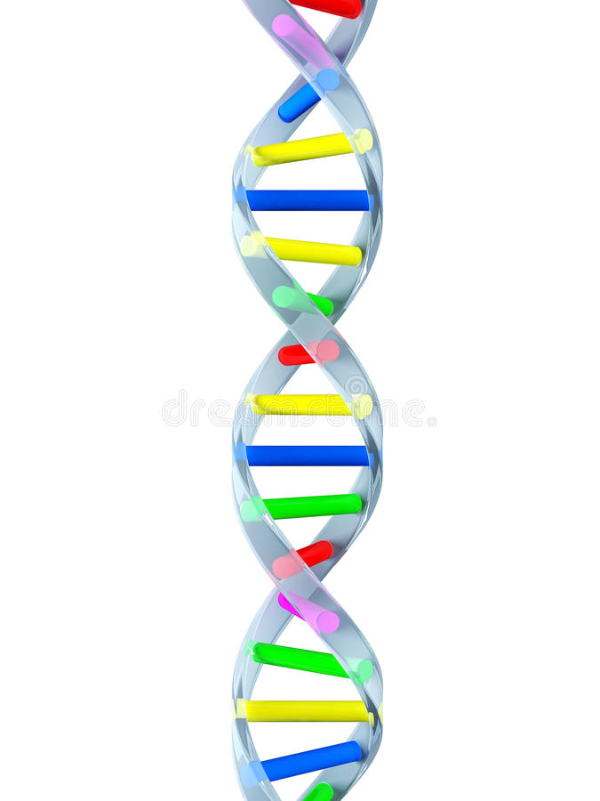 Dna Strand Clipart : strand, clipart, Strand, Stock, Illustration., Illustration, Medicine, 10140648
