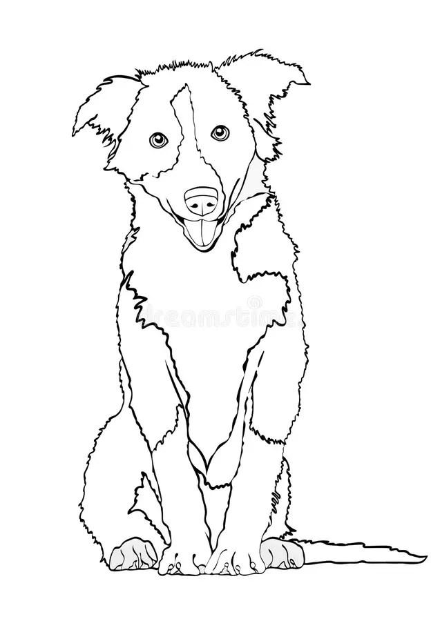 Dog Vector Outline Drawing, Sketch, Coloring Book. Black